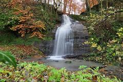 Dura Den (eric robb niven) Tags: ericrobbniven scotland dundee pitscottie waterfall dura den landscape springwatch