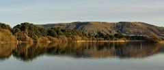 Shoreside (NanashiNoProfile) Tags: loch leven rspb heritage kinross scotland kinrossshire perthshire walk walking canon 700d autumn autumnal november