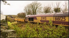 Over the garden wall. (peterdouglas1) Tags: ews class66 66125