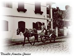 128 Envelhecidas Delfim Moreira MG Brasi2008 A640 Nov19 (1) (Vivaldo Armelin Jr.) Tags: delfim moreira mg brasil ruas stritt