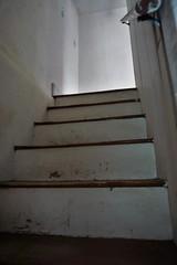 DSC00922 (hawkshoe) Tags: abandoned homes se pa
