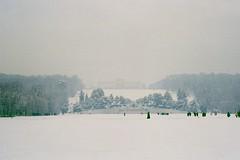 (barbieri simone) Tags: wien film 35mm analogic filmphotography filmisnotdead simonebarbieri archive canonat1 schoenbrunn snow