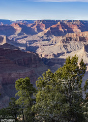 This place is stunning for Heart and Soul,Grand Canyon, Hermits Rest-South Rim, Arizona. (ellemusmxli) Tags: grand canyon gran cañon montaña montañas hole geology geologia naturaleza natura nature planet world tree trees arbol arboles landscape landscapes paisaje panorama sol sun sombras sombra amor love impresionante impactante stunning arizona national park parque nacional estados unidos america eua usa travel traveller viaje viajes rio colorado river hiking hike camping camp discovery explore exploring sunset reflexing peace relaxing relax relajacion el ellemus lemus norte north awesome backpack backpakers
