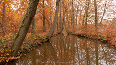 """Twickel"", Netherlands (CvK Photography) Tags: autumn color cvk europe fall forest nature netherlands outdoor reflection twente twickel"