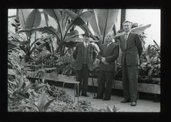 . (Kaïopai°) Tags: palme herrenhausen berggarten hannover garten park botanischergarten botanicgarden mann