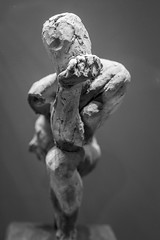musée rodin (fred9210) Tags: sculpture rodin penseur solo voigtlander nikon blackwhite