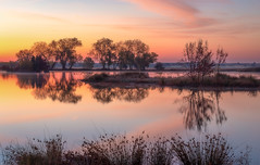 Sunrise Reflections, Rancho Murieta (optimalfocusphotography) Tags: autumn usa reflection nature sunrise reflections california trees sky fall water northerncalifornia fog clouds landscape geese sacramento