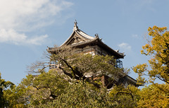 Hiroshima Castle - Through The Trees (_chloechappell) Tags: hiroshima japan travel castle architecture canon