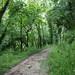 Kerdu River Trail