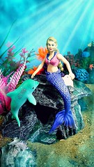 Gabriella plays with a baby dolphin (custombase) Tags: schleich bayala mermaid dolphin toyphotography