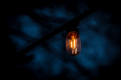Glowing in the dark (CecilieSonstebyPhotography) Tags: bokeh markiii oslo macro shadows closeup canon5dmarkiii night sky lightbulb canon evening lightbulbs light