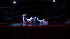 2019-11-16_21-15-23_ILCE-6500_DSC08191 (Miguel Discart (Photos Vrac)) Tags: 16mmf14dcdn|contemporary017 belgium belgique belgie catch 24mm highiso 2019 fwf focallength24mm focallengthin35mmformat24mm homelesstom combatdelutte flemishwrestlingforce fwfworldchampionship sport iso3200 wrestling lutte sony tessenderlo wrestlingmatch ymah ilce6500 sonyilce6500 notitlechange sonyilce650016mmf14dcdn|contemporary017 wrestlingwars2019