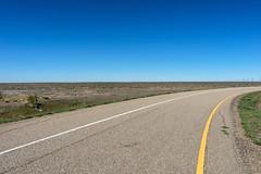 Road Through Drought (Bracus Triticum) Tags: road through drought アルバータ州 alberta canada カナダ 8月 八月 葉月 hachigatsu hazuki leafmonth 2019 reiwa summer august