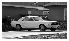 Ford Mustang of 1967 (49er Badger) Tags: mustang ford 1967