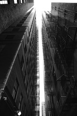 JIM_6688 (James J. Novotny) Tags: nikon d750 downtown chicago city citylife bw buildings building blackandwhite unlimitedphotos unlimited anything