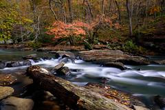 46/52 - Black Creek (jonwhitaker74) Tags: alabama fall outdoor nikond750