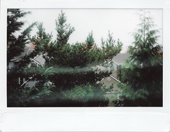 Through the Window (John S. Photos) Tags: instax instax300 instaxwide fuji