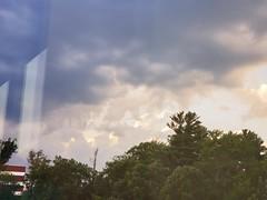 7-21 to 7-31 (bradye21) Tags: clutch sears car wash carwash rain road runoff summer 2019 summer2019 flower flowers tree trees food rolls traderjoes cloud clouds moth giantmoth mothra cars bridge twinbridges thaddeuskosciuskobridge northway ny albany albanyny latham sun sunset dusk dark nissan maxima nissanmaxima house architecture retail store mall fountain sign cat blackcat doghaus badmuthaclucka vinyl record records wampire renaissance music recordplayer jcpenney venom energydrink cardealership mysticpizza mozzarellasticks bird hawk vulture crow rays hannaford grocerystore flag waterford