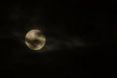 Moon Rising (flashfix) Tags: november132019 2019inphotos flashfix flashfixphotography ottawa ontario canada nikond7100 55mm300mm moon sky night