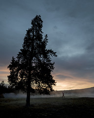Sunrise on the fronteer (loewx017) Tags: nature life flickr flick photo picture dusk dawn light dark sunrise sunset tree mood moody color bright saturation yellowstone fog mist steam water