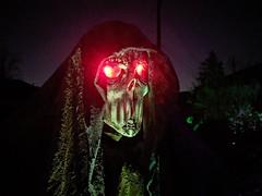 druid2 (2) (Ricky Grove) Tags: yardhaunt halloween halloweendecorations