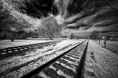 _DSC3558 Tracks B&W (Charles Bonham) Tags: peremarquette1225 ashleymi northpoleexpress infrared blackandwhite sonya7r laowazerod12mmf28 tracks steamrailroadinginstitute charlesbonhamphotography