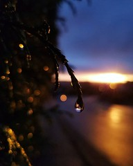 Cedar Sunset (BenRogersWPG) Tags: cedar sunset android samsung galaxy note 5 cedarsunset samsunggalaxynote5 instagram