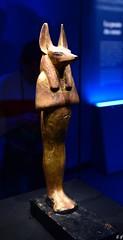 Statuette à tête de chacal de Douamoutef (pontfire) Tags: statuette à la tête de chacal douamoutef détails égyptien hiéroglyphe hieroglyph egypte pharaon ancien egypt egyptian tomb ancient times trip travel voyage trips traveler tourism holiday nouvel empire tombe kv62 dans vallée des rois tutankhamon king tut exhibition exploring artifacts archaeology tutankhamun hanubis