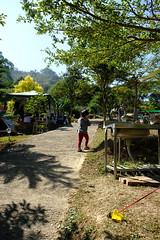 DSCF5740 (諾雅爾菲) Tags: fujifilmxe3 taiwan 台灣 桃園 鑫園馬告露營區 鑫園馬告咖啡 露營 camping