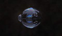 nov15 2019 1 (Delena Jane) Tags: delenajane macro bubble reflections pentaxart pentaxk70 newfoundland canada closeup abstract