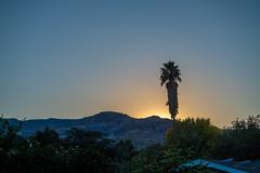 sunset in the valley (Robert Borden) Tags: santaclarita la losangeles suburbia socal cali california landscape landscapephotography fuji fujifilmxt2 fujiphotography fujiglobal nature photoday momentribe instadaily beauitiful good