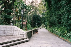 Fort Canning Park (kullaphut) Tags: singapore street kodakportra400 portra400