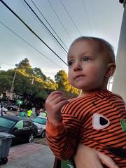 Watching the runners (quinn.anya) Tags: eliza toddler pumpkin berkeleyhalfmarathon watching