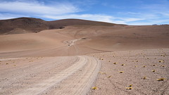 The rally (Chemose) Tags: sony ilce7m2 alpha7ii mai may bolivie bolivia paysage landscape désert montagne mountain andes sudlipez southernlipez lipez desert piste track 4x4 auto car