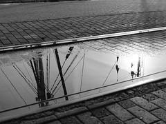 Fischereihafen (jörg_grontzki) Tags: xt3 schwarzweis bnw cuxhaven nordsee urlaub reise travel travelpics pfütze spiegelung fischereihafen
