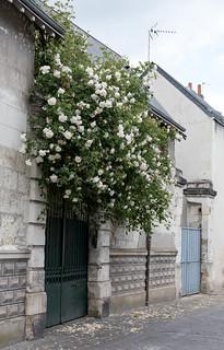 Tours (Indre-et-Loire, France)