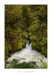 Okere Falls - Rotorua New Zealand (Dominic Scott Photography) Tags: dominicscott newzealand rotorua okere falls kaituna waterfalls waterfall rapids river trees longexposure leefilters leeirnd manfrotto sony ilce7rm3 sel2470gm gmaster