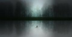 """Why ?......."" (Corinaldesi Roberto) Tags: fog lake mystery woman man nature landscape"
