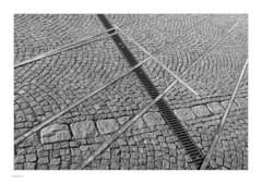 Around Slotsholmen, Mono (Michael Fleischer) Tags: slotsholmen copenhagen autumn sidelight tonality detail lines shadow blackwhite monochrome tamron sp 35mm f14 di usd nikon d810 cobblestone