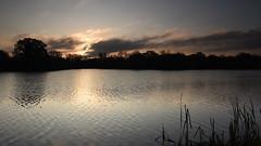 Dawn, Dinton Pastures (rq uk) Tags: rquk nikon d750 nikond750 leereverse06 afsnikkor1835mmf3545ged sun grey red water lake dawn dintonpastures