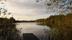 White Swan Lake In Early Morning Sun - 2, Dinton Pastures (rq uk) Tags: rquk nikon d750 sun water lake dintonpastures trees reflections whiteswanlake nikond750 afsnikkor1835mmf3545ged