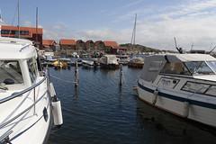 Skjærhalden 1.13, Hvaler, Norway (Knut-Arve Simonsen) Tags: kirkeøya hvaler norge норвегия norway noruega norwegen norvegia norvège नॉर्वे 挪威 ノルウェー நோர்வே νορβηγία sydnorge sørnorge østlandet glomma oslofjorden østfold norden scandinavia скандинавия э́стфолл фре́дрикстад гло́мма ослофьорд vann hav tre hytte brygge water sea cottage pier banco agua hierba árbol cabaña muelle wasser meer hütte acqua molo mare skjærhalden