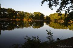 """Au dernier soleil d'une belle journée (Brigitte .. . """"Tatie Clic"""") Tags: 201910082 octobre automne lac refletsdansleau arbres coucherdesoleil clairobscur lotetgaronne aquitaine francesudouest"""