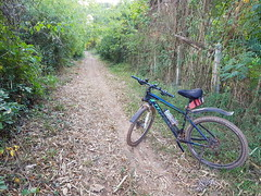 Dirt track in Ban Wat Luang (SierraSunrise) Tags: thailand isaan esarn nongkhai phonphisai bicycle road dirt unpaved forest