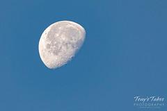 November 17, 2019 - Daytime moon. (Tony's Takes)