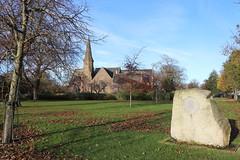 Queen Elizabeth II Field,Montrose_nov 19_590 (Alan Longmuir.) Tags: queenelizabethfield tayside montrose