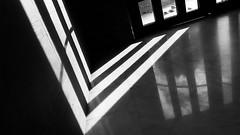 Del Revés (Tomás Hornos) Tags: móvil fotosconelmóvil fotografíaconmóvil mobile mobilephotografy smartphone monocromo monochrome monocromatico blancoynegro blackandwhite blackwhite rayosdesol rawtherapee sol sun hojas leaves luz reflejo reflection reflejos