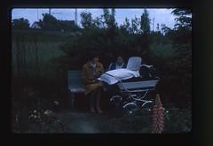 . (Kaïopai°) Tags: vintage dia slide blumen garten staudenbeet staude garden natur blüten sommer blüte pram kinderwagen sitzbank frau mutter mother