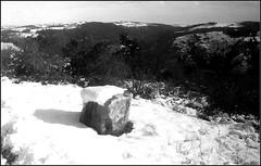 Essalois sous la neige      Zorki 1D  sERENAR 35MM   (12) (Bokey Shutter) Tags: zorki1d jupiter8 noirblanc loire