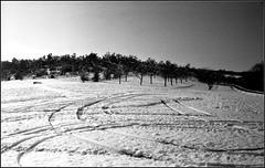 Essalois sous la neige      Zorki 1D  sERENAR 35MM   (13) (Bokey Shutter) Tags: zorki1d jupiter8 noirblanc loire